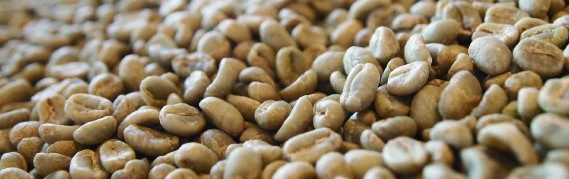 生豆 エチオピア